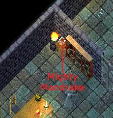 ararat-mightymandrake
