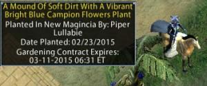 contract-plot