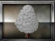 eleventh-snowtree