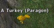 paragon3